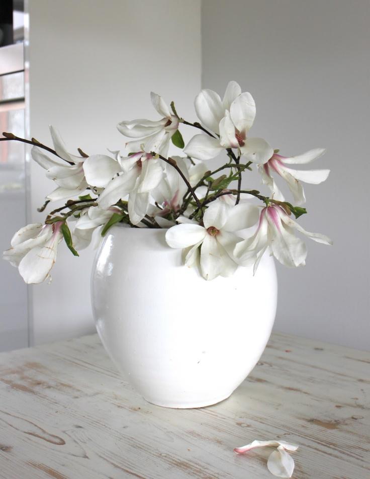 The style of Miss M: O lala, magnolia