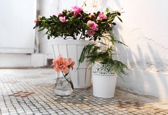 Hoe je een balkon, tuin of patio gezellig maakt? Met onze SKURAR serie! #IKEA #moederdag