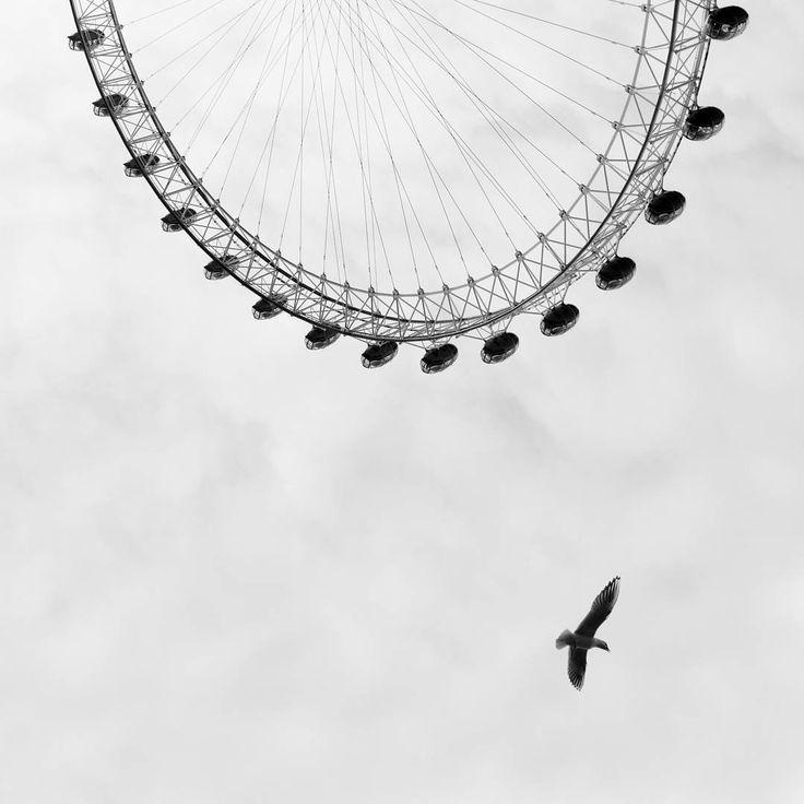 ***#Londoneye*** #London #lines#passionpassport @inlenso #photo #theculturetrip #architecture #art #artwork  #instaphoto #instaart #instagood  #vscocam #vscogood #london  #archilovers #abstract  #abstractart #photooftheday  #vsco #learnminimalism  #minimalha  #mono #blackandwhite #monochrom #urban  #architecture_greatshots  #thecity_life @mrporterlive @leicauk @leica_uk #minimalbirds #MRPORTERphotolondon