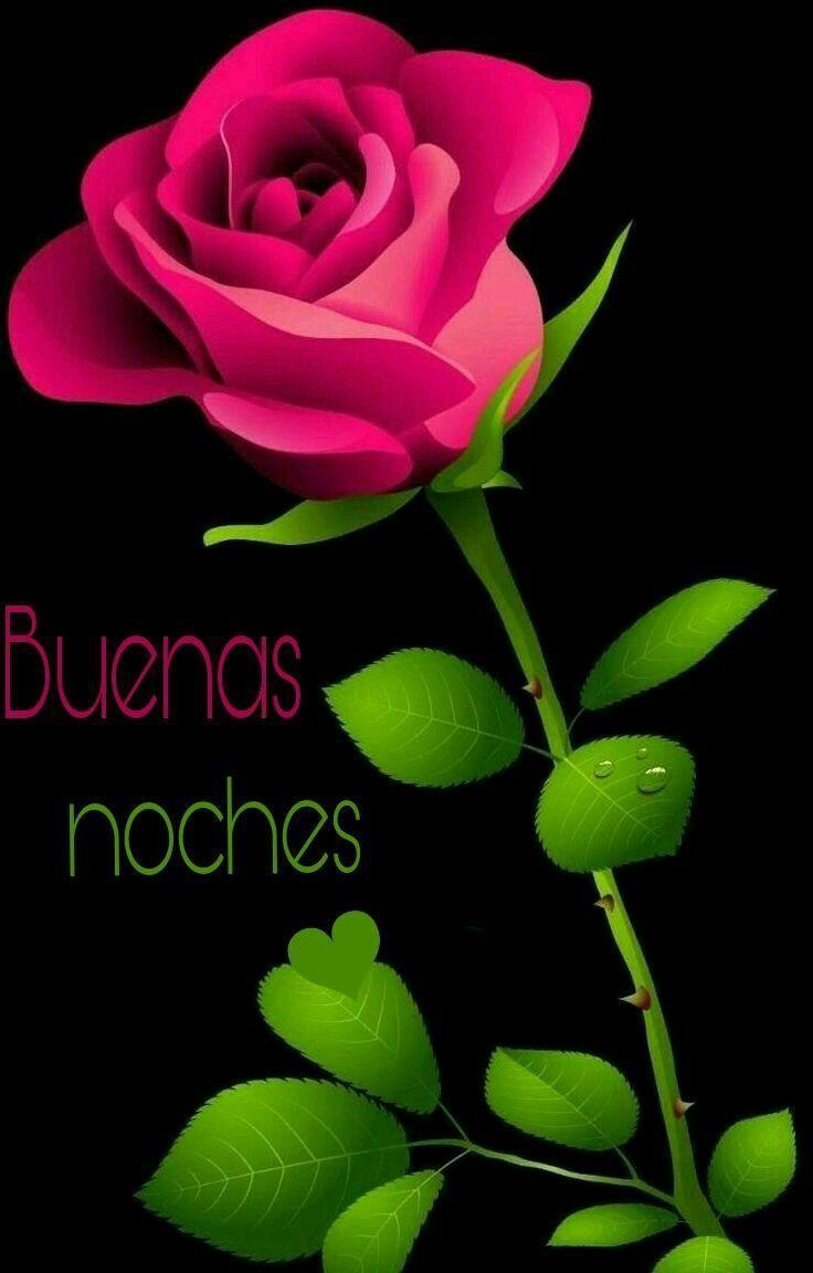 Imagenes Con Frases Para Las Buenas Noches Para Whatsapp Rosas