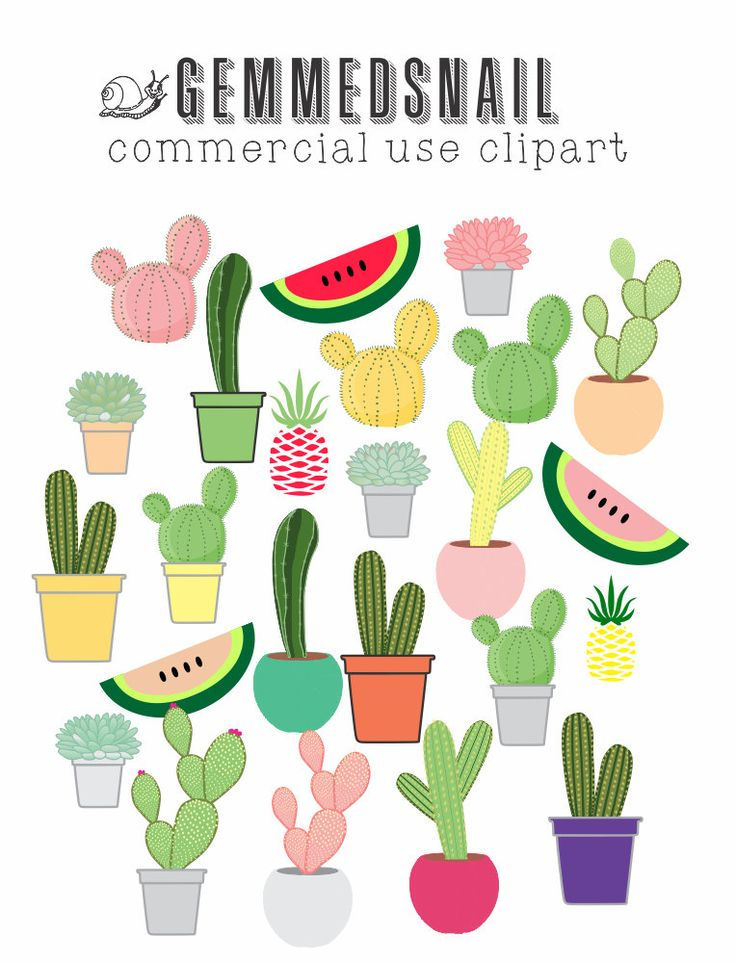 Cactus clipart, succulent clip art features pineapple and watermelon too, 24 cliparts in this set