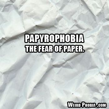 essay on fear of terrorism