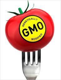 GMO – Non-GMO Food List and Organic Shopping Guide – Updated