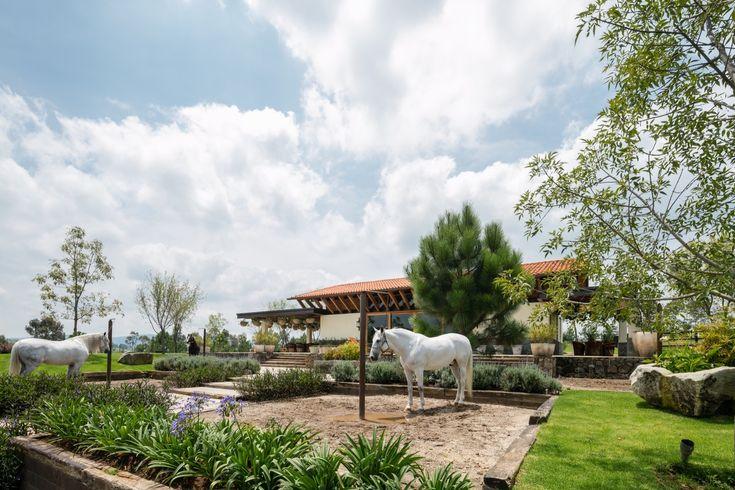 Galería de Rancho La Stella / AE Arquitectos - 8