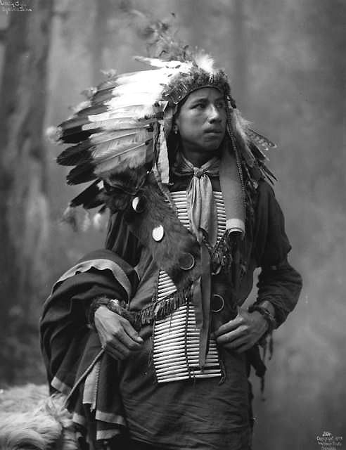 Crazy Bull - Oglala / Sioux (Lakota)   Portrait of Crazy Bull, Native American Oglala Sioux, (Lakota) wearing a cotton shirt, hair pipe breastplate, feather headdress, and an animal fur bandolier  1899 from the Denver Library Collection