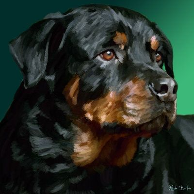 Rottweiler by NicoleBarber on DeviantArt