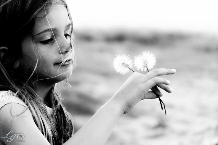 Black & White Photography - Dandelion blowing in the wind