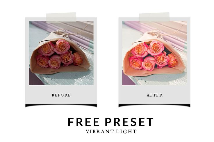 Free Preset Vibrant Light - Chic Lightroom Presets & Brushes