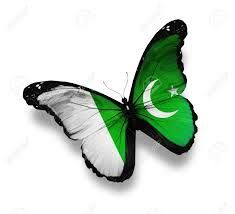 butterfly shape pak flag