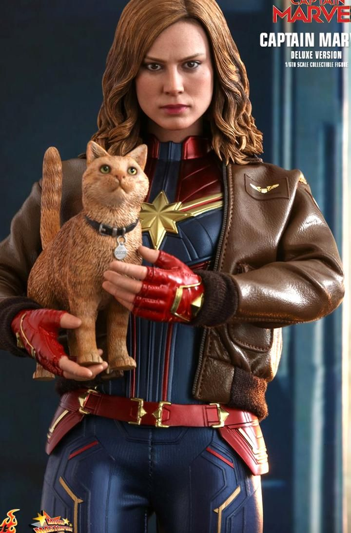 Hot Toys Captain Marvel Comes With An Incredible Goose The Cat In 2020 The Incredibles Hot Toys Captain Marvel [ 1093 x 720 Pixel ]