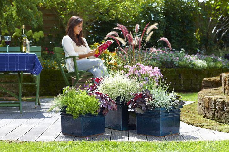Sie sind Pflanzen-Anhänger? Wunderschön! Im Folgenden finden Sie mehr Informationen darüber, wie Sie Gräser pflanzen und pflegen können.