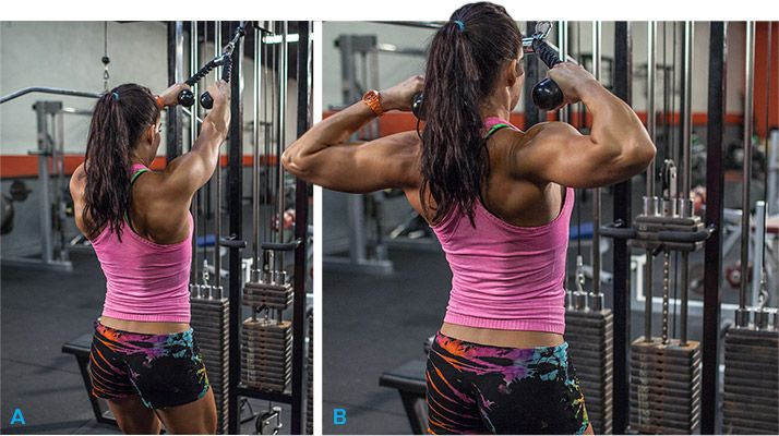 An athletic frame and great physique aren't complete without a strong back. Here's the workout that will build strength and carve aesthetics in your traps and lats!