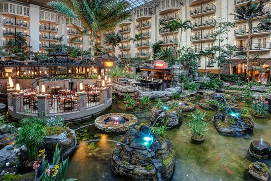 Book Gaylord Opryland Resort & Convention Center, Nashville on TripAdvisor: See 8,740 traveler reviews, 4,752 candid photos, and great deals for Gaylord Opryland Resort & Convention Center, ranked #52 of 154 hotels in Nashville and rated 4 of 5 at TripAdvisor.