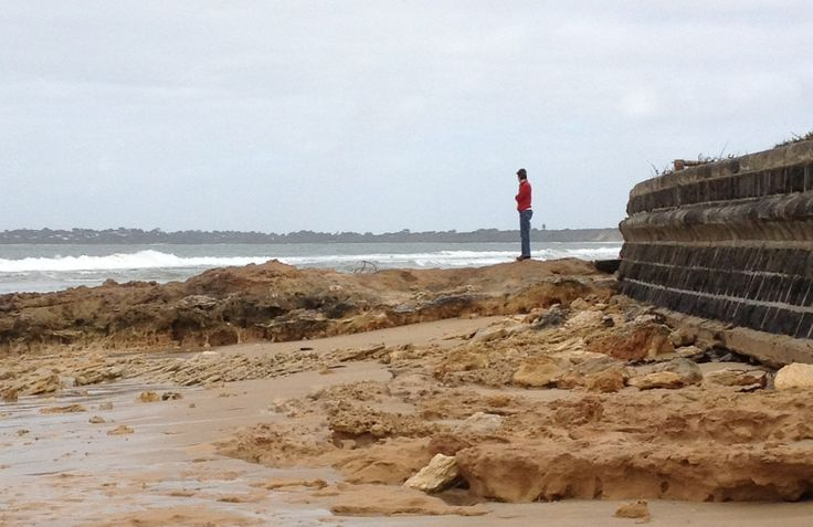 Dr Wall & the Queenscliff Sea Wall. Looking towards Point Lonsdale.