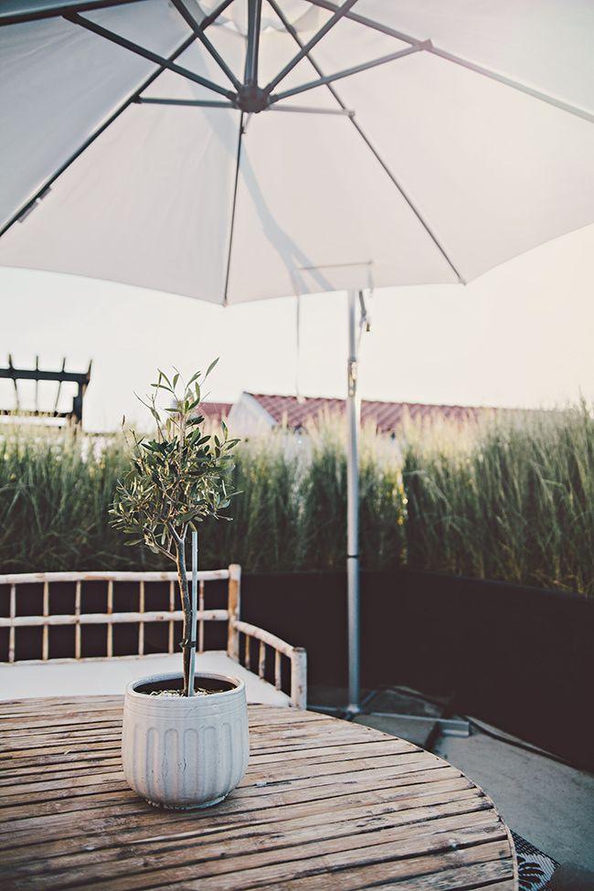 Helt enkelt // tine k home // bambu // spotted by Design Circus