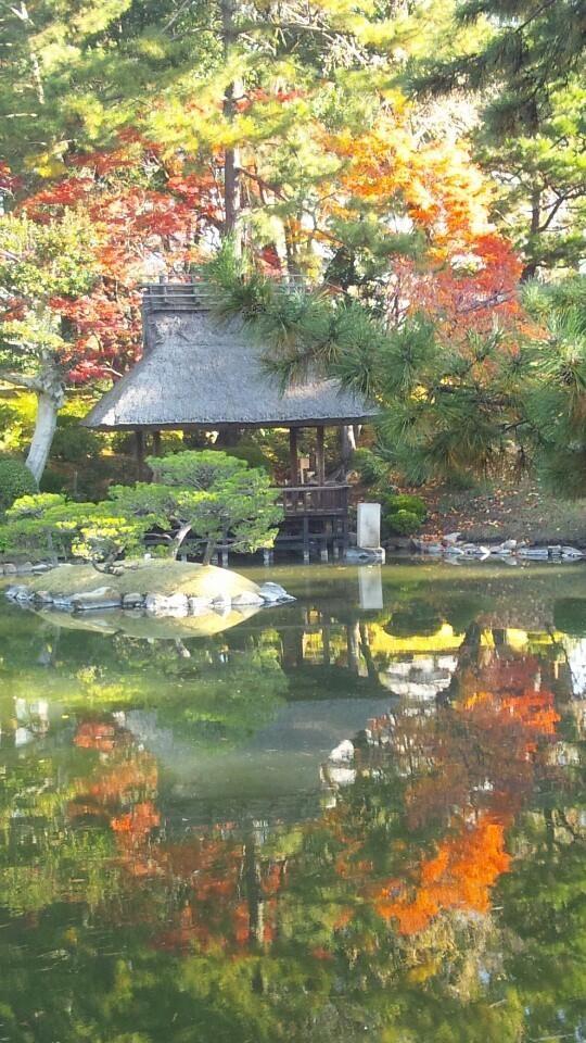 sukach Hiroshima 757 best Gardens images