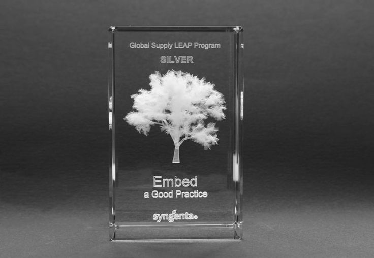 I chose this image for its tree design, glass materials and writing formats