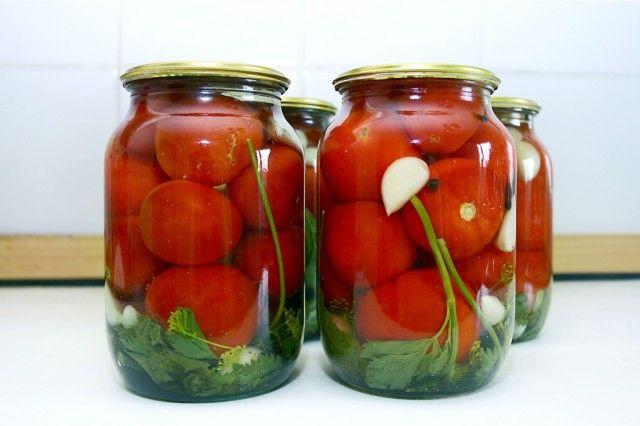 Существует бесконечное множество рецептов маринованных помидоров. Эти рецепты передаются из поколения в поколение, перенимаются от друзей или соседей. Во многих семьях хранятся рецепты маринованных …