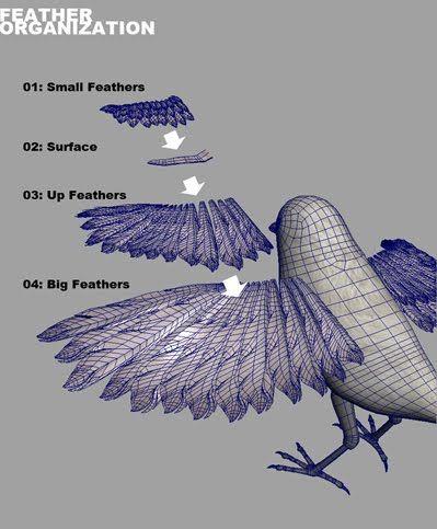 Bird Rigging/ Feather script (maya, mel script)