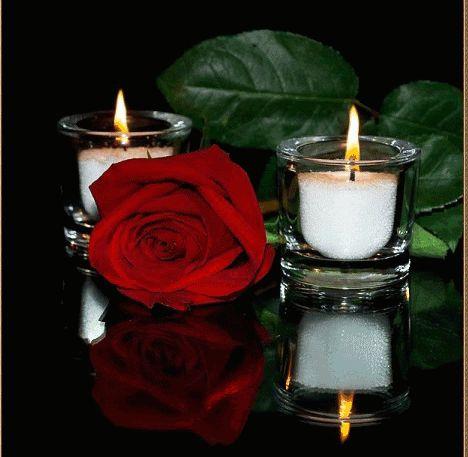 Velas con una rosa roja