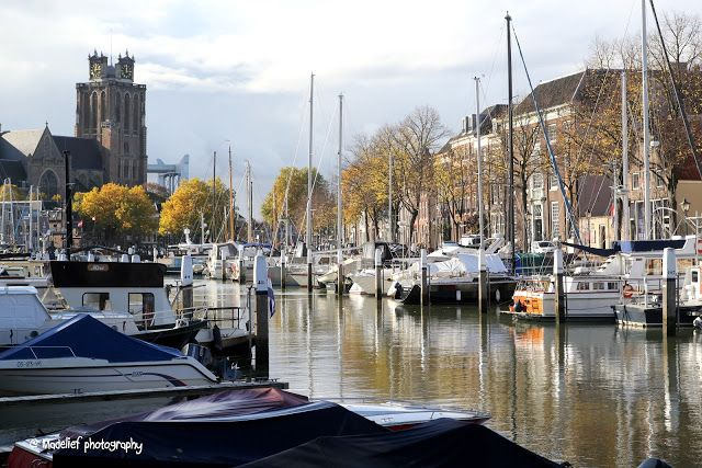 Madelief blog - Dordrecht
