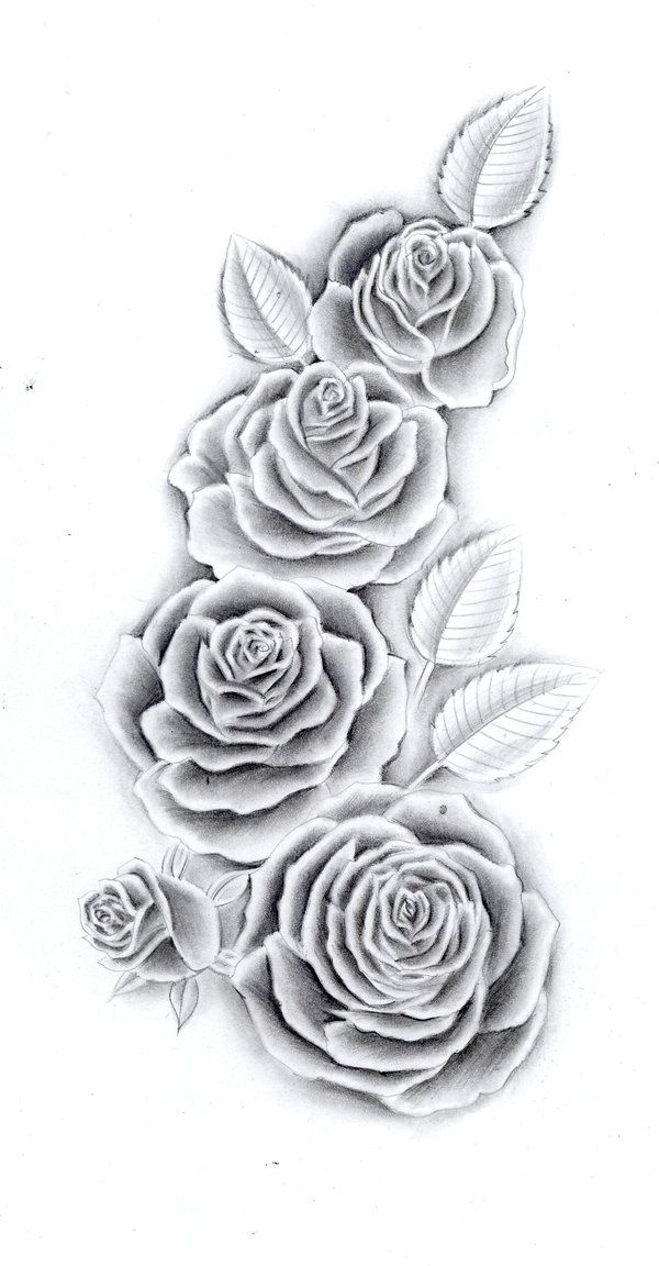 Best Rose Tattoo Images On   Drawings Rose Tattoos