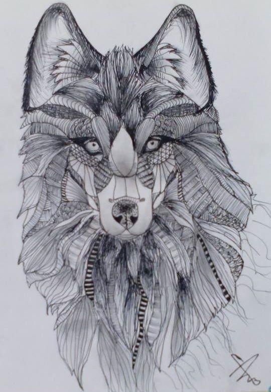 Farkas | Képek / rajzok