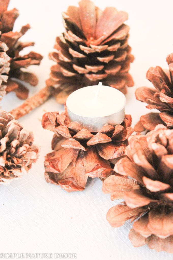 Decorate with pine cones and make them even prettier by lightening the,Simple Nature Decor
