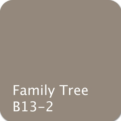Dutch Boy Color: Family Tree B13-2 #color #gray