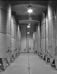 Abbey winery Pannonhalma by Czigány Tamás