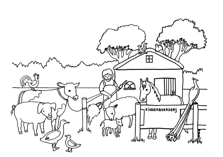 они раскраска животные на ферме распечатать уместны везде