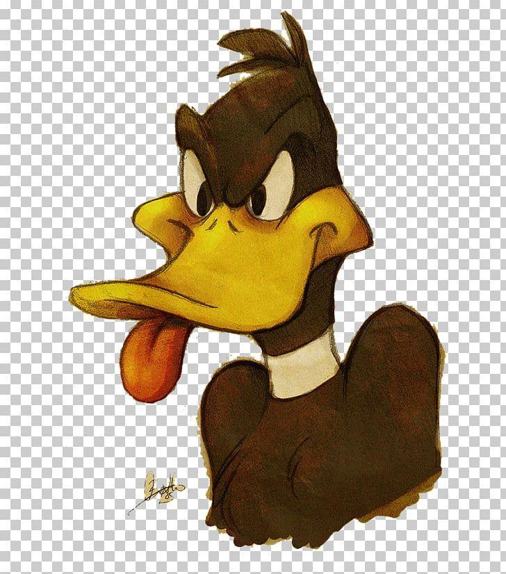 Daffy Duck Donald Duck Cartoon Png Animals Animation Beak Bird Cartoon Duck Cartoon Cartoons Png Daffy Duck