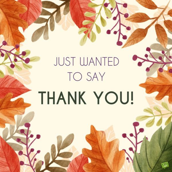 52 best Thank You Quotes images – Saying Thank You for Birthday Greetings