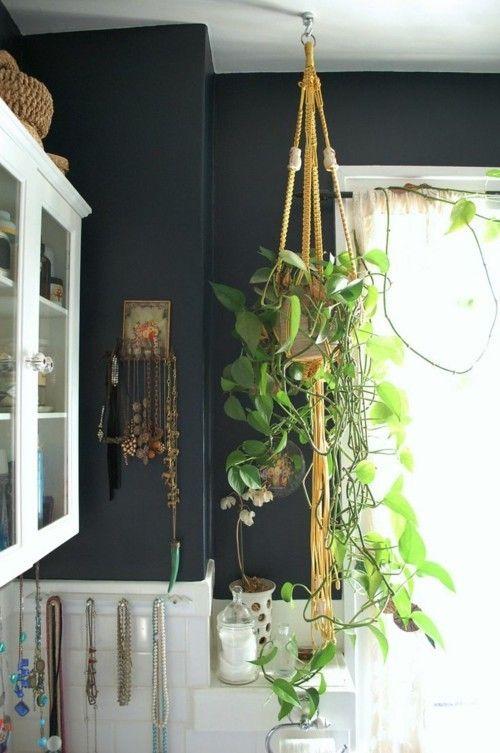 Efeutute  herunterhängend  Badezimmer  Blumenampel  absolutes Highlight - pflegeleicht