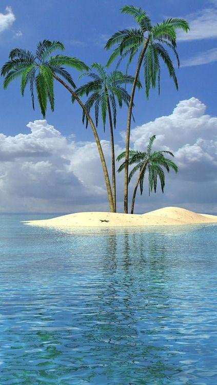 Island Beach All You Need Sea Palm Trees Sand
