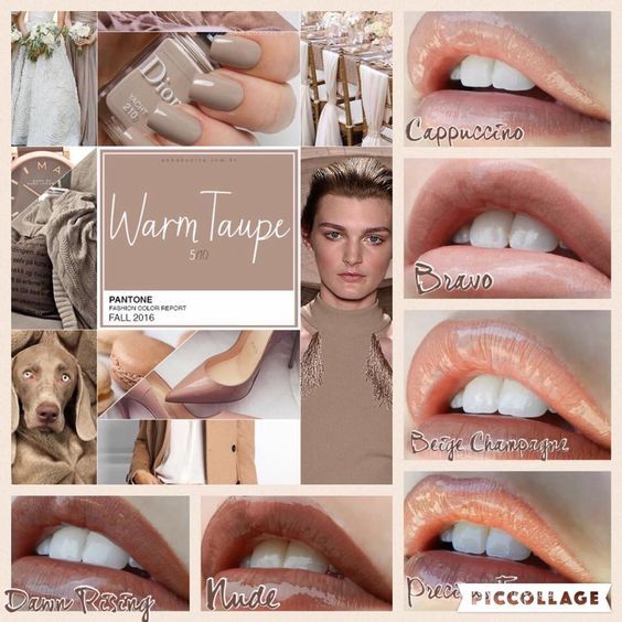 Fall 2016 colors and Lipsense matches  Visit my Online Store at https://www.senegence.com/GetLippywithStephanie and order today. Independent Distributor# 206089 I ship throughout the US and to all military addresses!