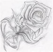 Resultado de imagen de dibujos de rosas a lapiz
