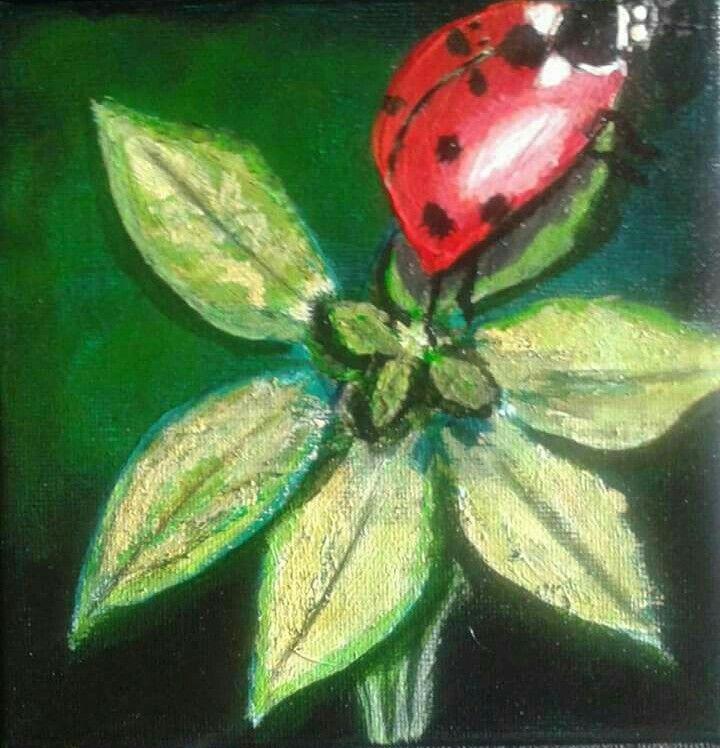Ladybird series 7