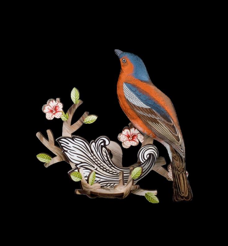 Bird on branch - Finch