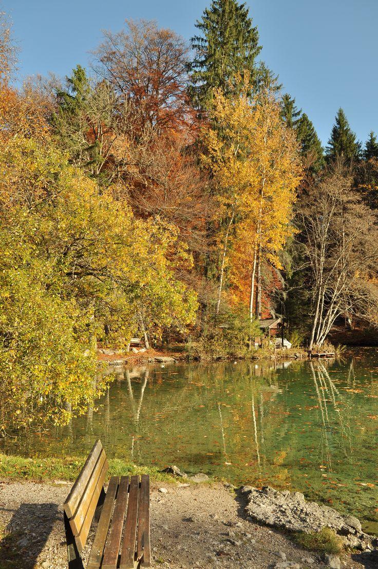 Der Herbst ist wunderschön ...