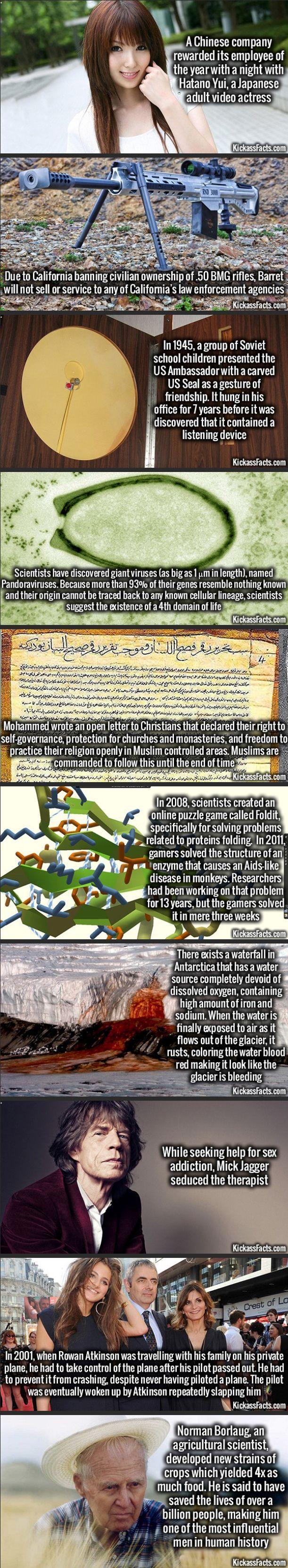 Some Random Interesting Facts Compilation