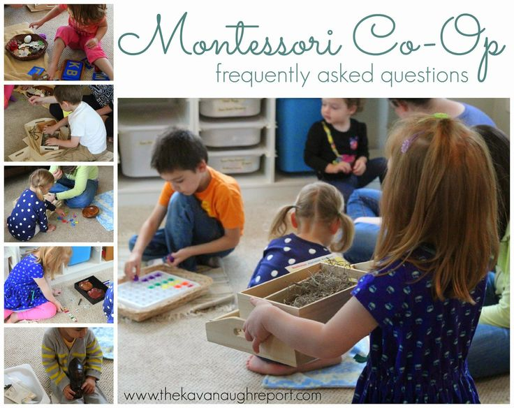 Montessori Co-Op FAQs from The Kavanaugh Report