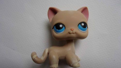 Littlest-petshop-LPS-chat-europeen-European-cat-228