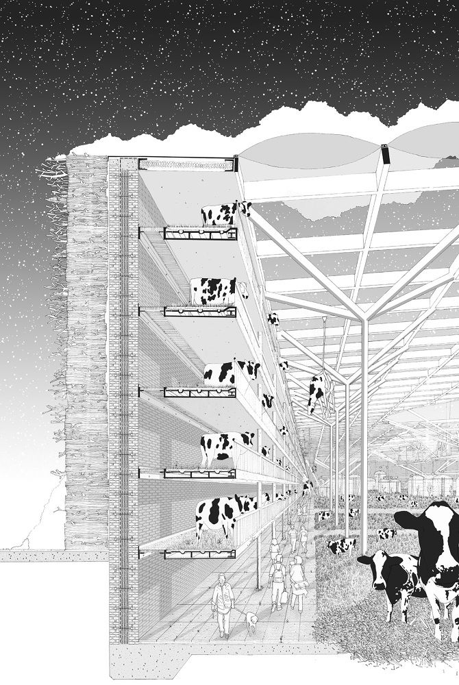 Architecture drawing + cows = awesome. LONDON ENERGY EXCHANGE - Jason Lamb