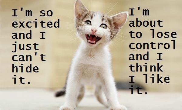 Sing it kitty!: Animal Captions, Beautiful Animal, Animal Cuti, Cat Spir, Funny Animal, Sharon Montro, Cat 34, Cat Lady, Adorable Animal