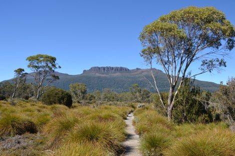 The Overland Track, Tasmania, Australia www.alwayshappytravels.com