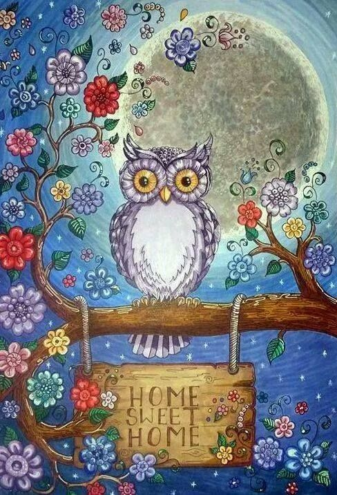 Owl Home Sweet Home ~
