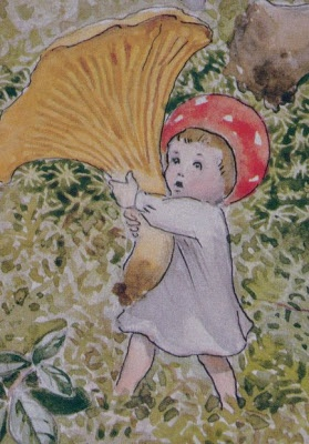 A Polar Bears Tale: Children of the Forest by Elsa Beskow