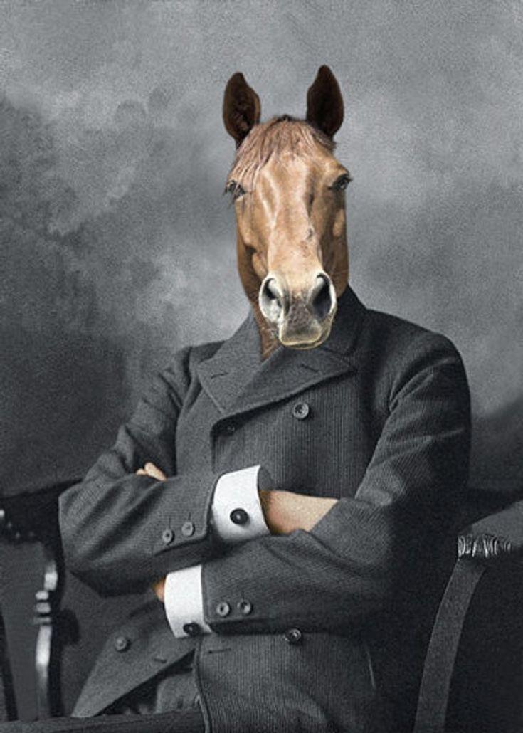 лошадь в пальто картинка ролике видно, как