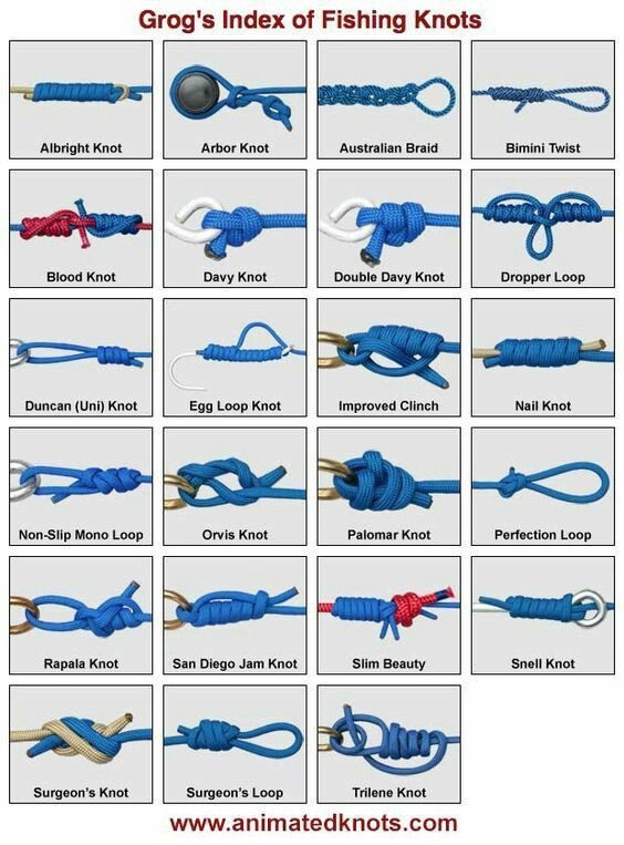 496 best fish 39 n images on pinterest fishing bass for Types of fishing knots